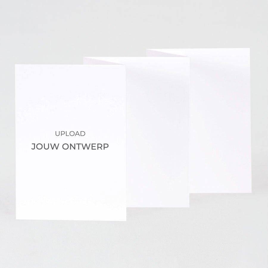 vijfluik-kaart-voor-eigen-ontwerp-mat-papier-TA0330-1800052-15-1