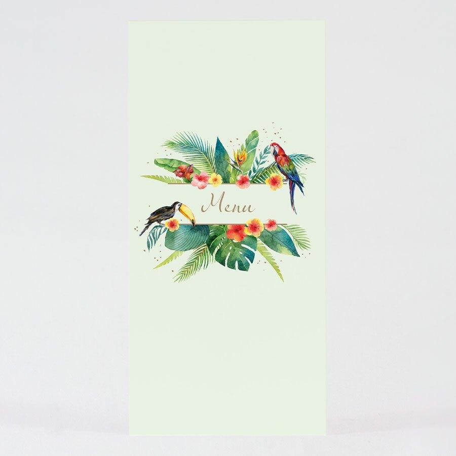 carte-menu-bapteme-perroquets-des-iles-TA0529-2000007-09-1