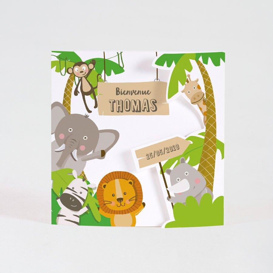 faire-part-naissance-animaux-de-la-jungle-TA05500-1800017-09-1