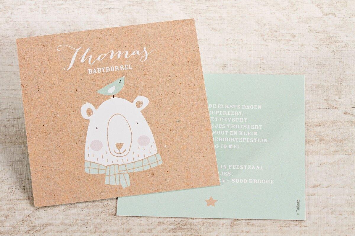 kaartje-babyborrel-met-beer-en-vogeltje-TA0557-1600037-15-1