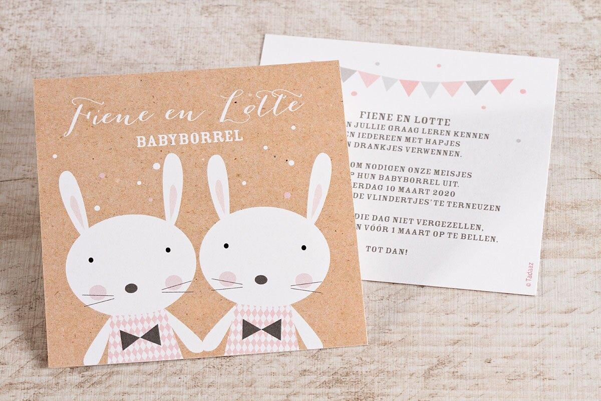 uitnodiging-babyborrel-tweeling-meisjes-TA0557-1600045-15-1