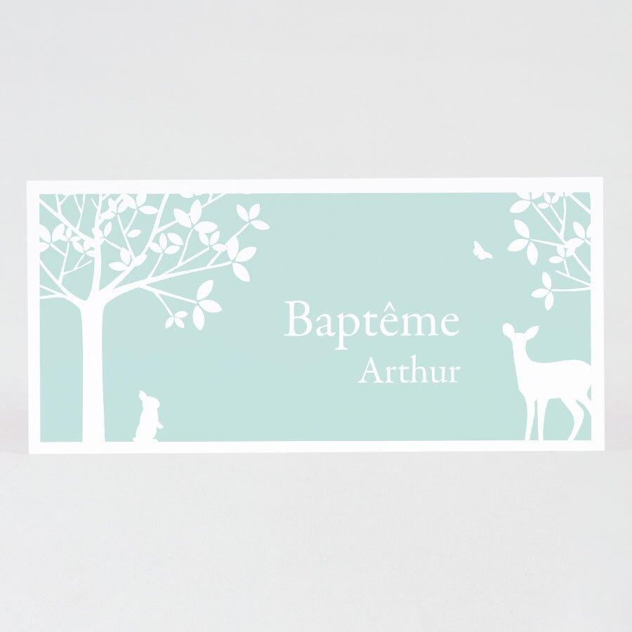 invitation-bapteme-foret-vert-menthe-TA0557-1600104-09-1