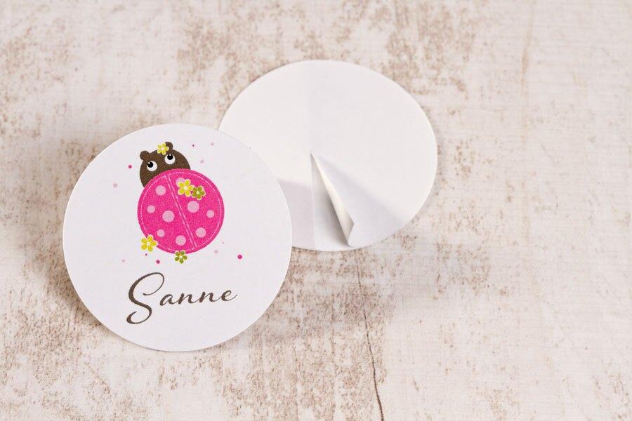 kleine-ronde-sticker-met-lieveheersbeestje-3-7cm-TA05905-1900018-15-1