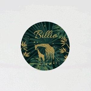 jungle-sticker-met-girafjes-en-naam-4-4-cm-TA05905-2000024-15-1