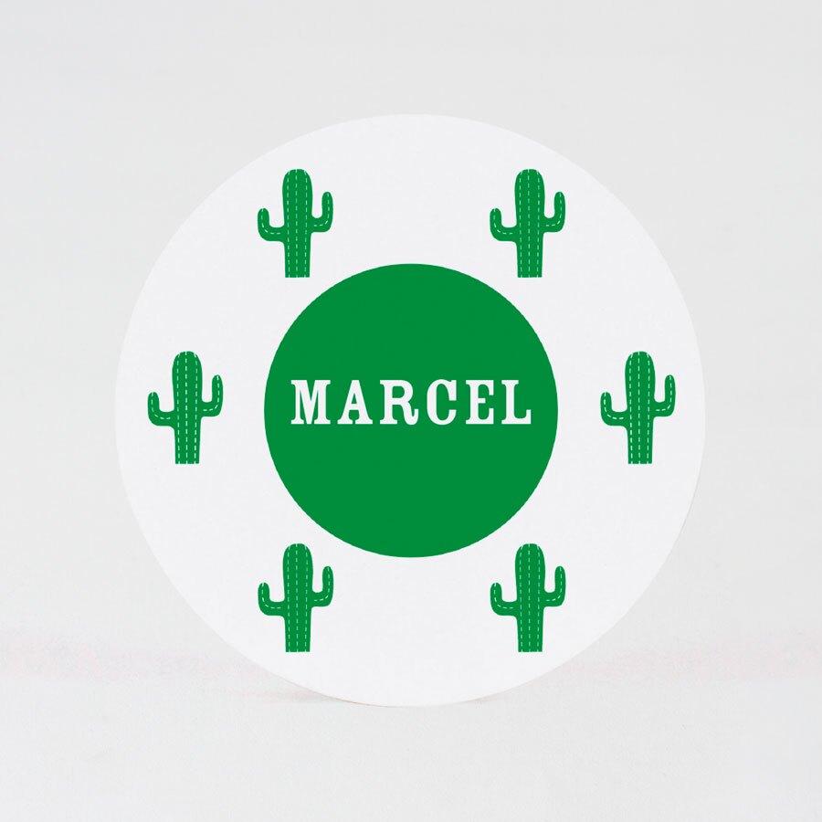 ronde-sticker-met-cactussen-8-3-cm-TA05905-2000067-15-1