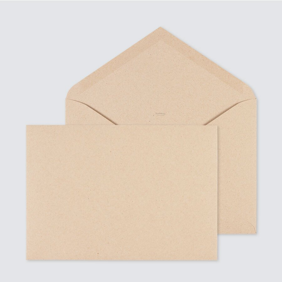 bruine-eco-enveloppe-22-9-x-16-2-cm-TA09-09010212-15-1