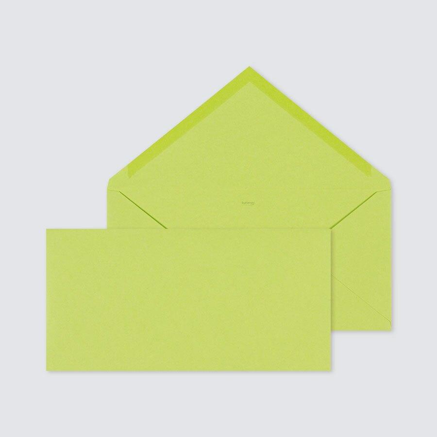 enveloppe-vert-anis-rectangulaire-22-x-11-cm-TA09-09904705-09-1