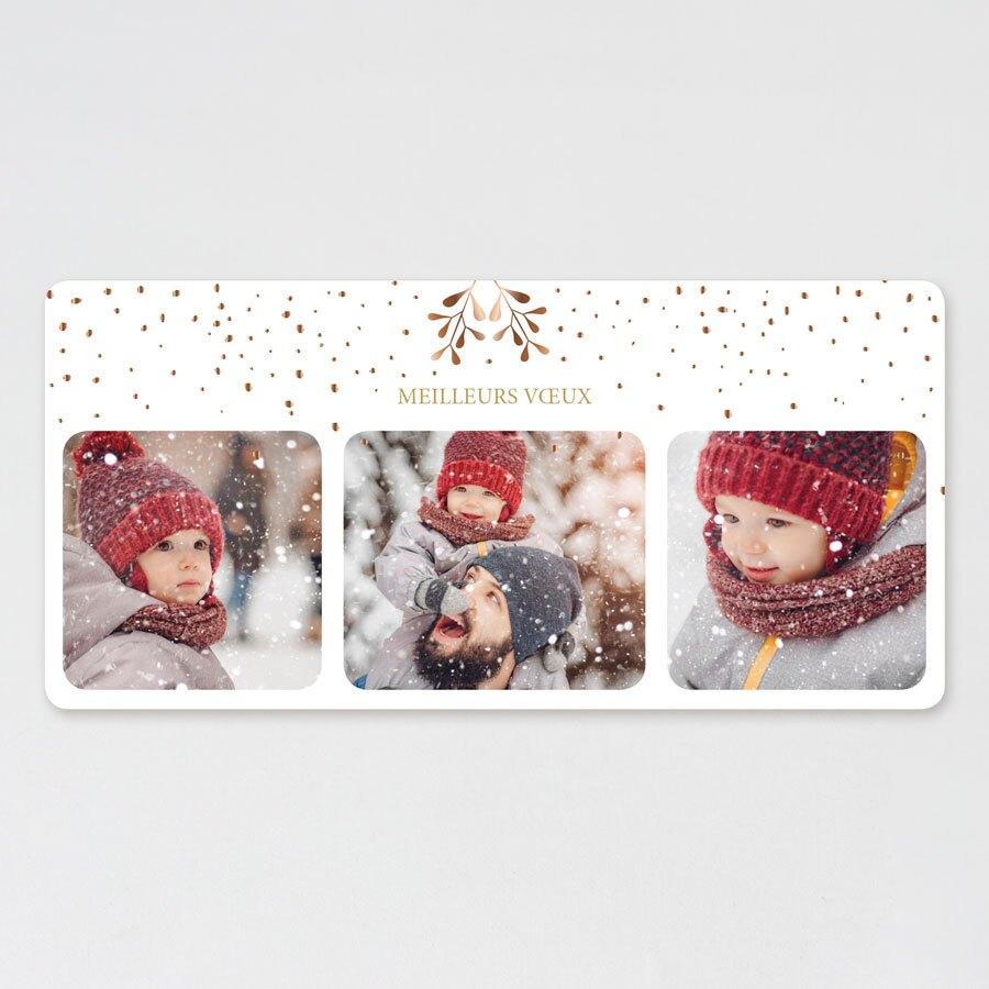 carte-de-voeux-3-photos-gui-et-confettis-dores-TA1188-1900024-09-1
