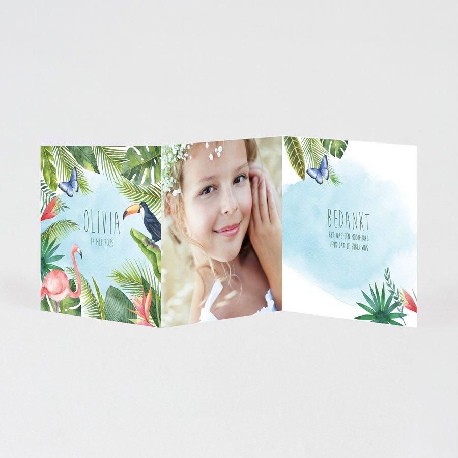 tropisch-drieluik-bedankkaartje-TA1228-1900037-03-1