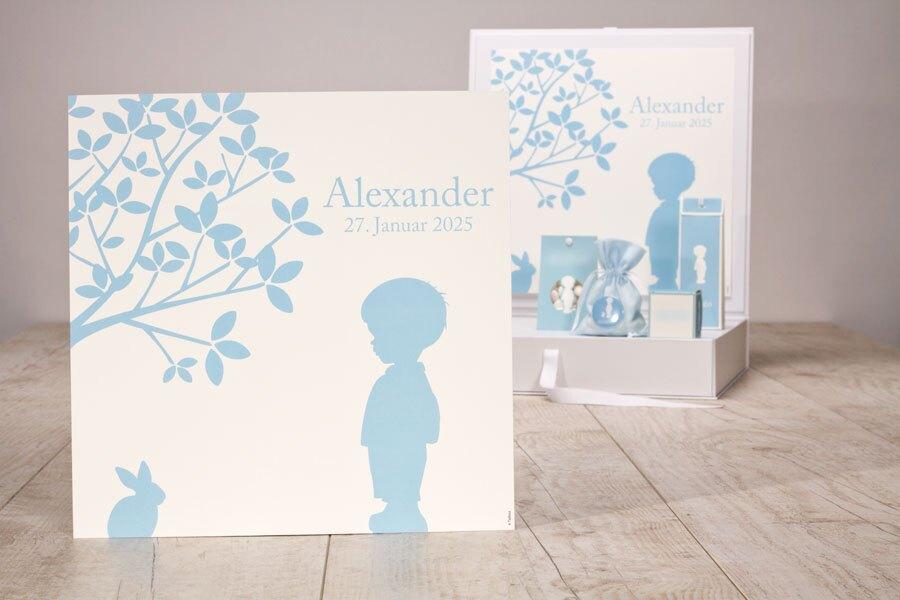 poster-fuer-praesentationsbox-babyblau-junge-und-haeschen-TA1573-1800003-07-1