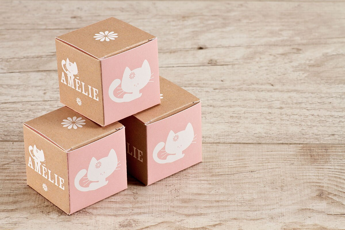 contenant-a-dragees-rose-fille-et-chaton-TA1575-1600059-09-1