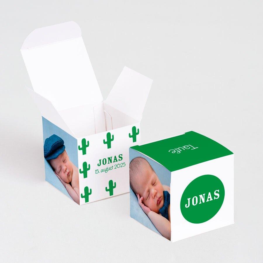 originelle-faltbox-mit-foto-und-kakteen-TA1575-2000003-07-1