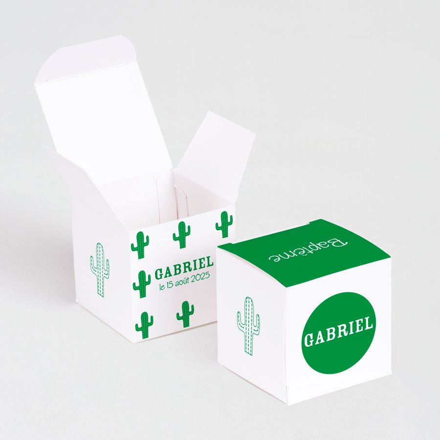 boite-a-dragees-bapteme-cactus-vert-TA1575-2000005-09-1