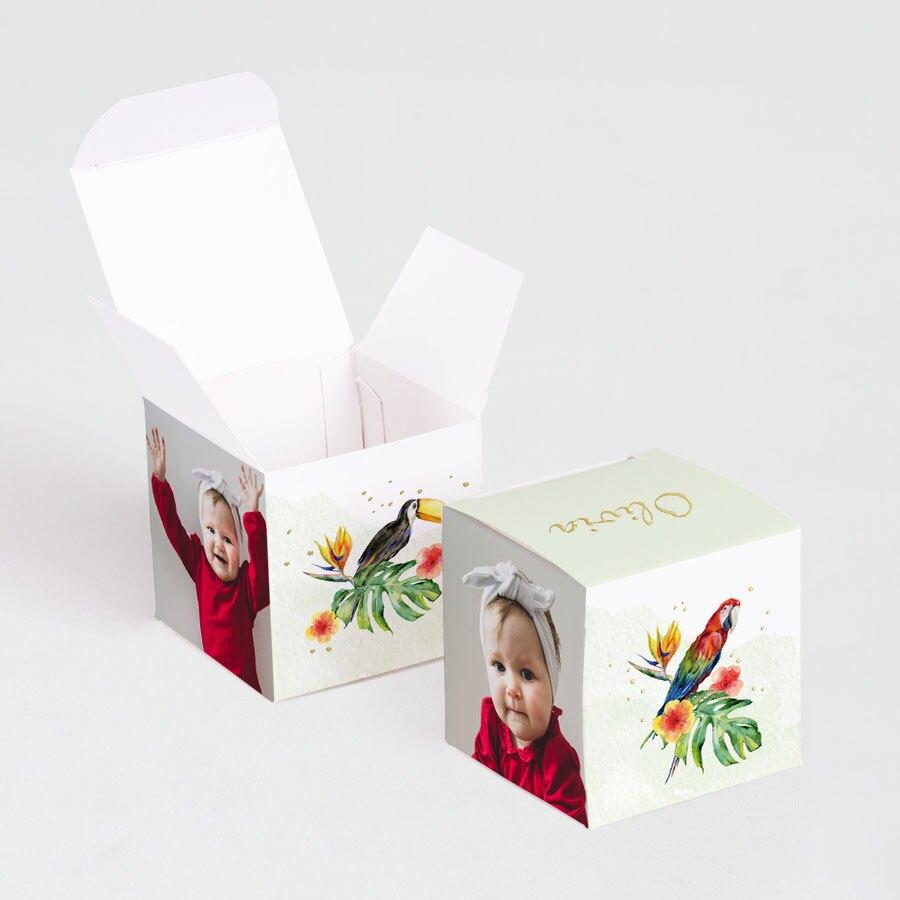 boite-a-dragees-bapteme-perroquets-des-iles-TA1575-2000058-09-1