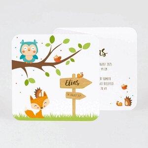geburtskarte-eule-fuchs-igel-TA507-085-07-1