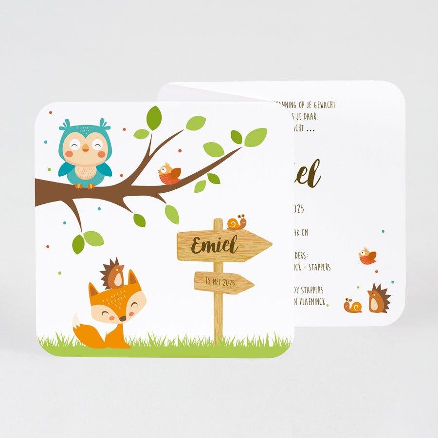 vrolijk-drieluik-geboortekaartje-met-bosdiertjes-buromac-507085-TA507-085-15-1