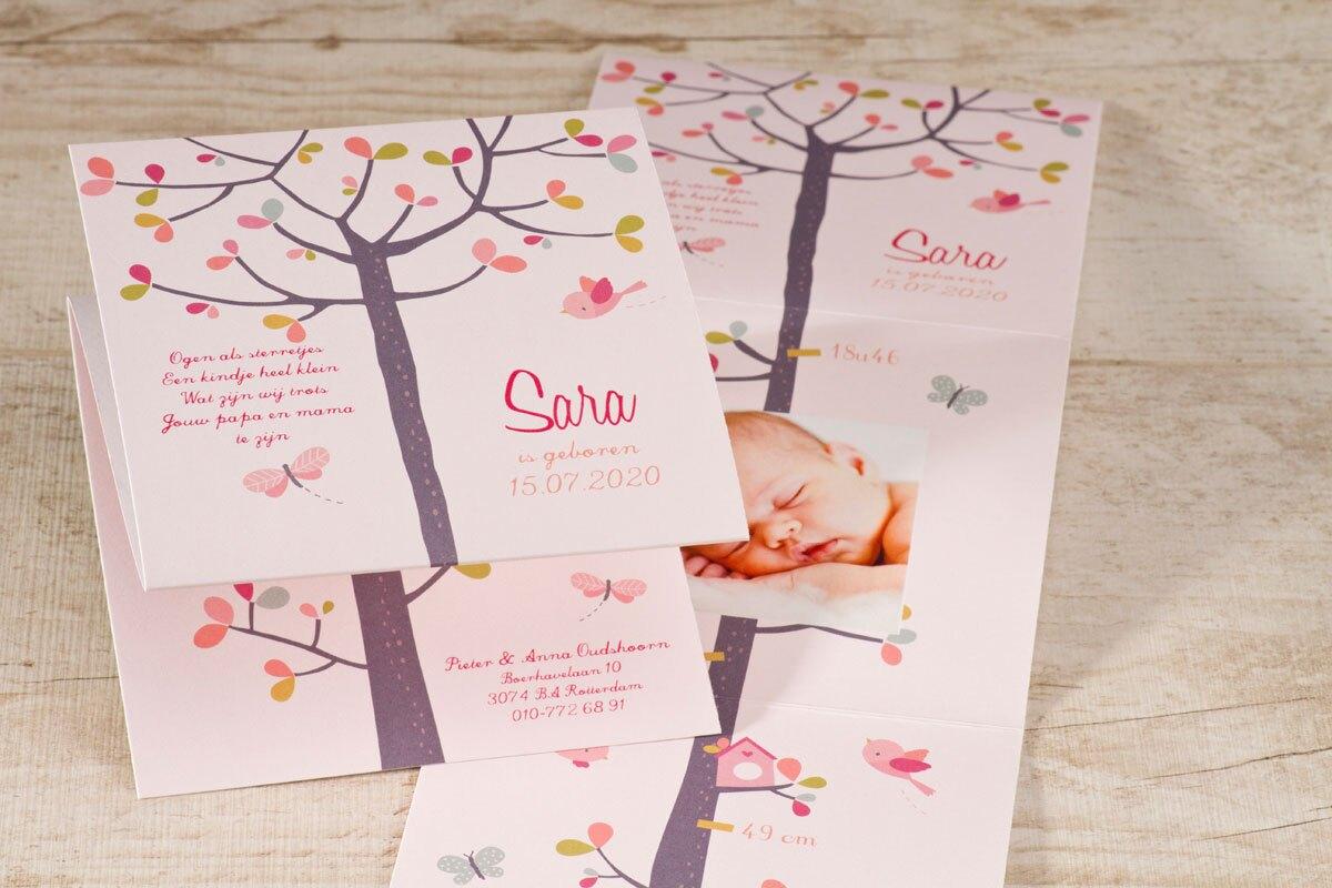 drieluik-fotokaart-roze-buromac-586136-TA586-136-15-1