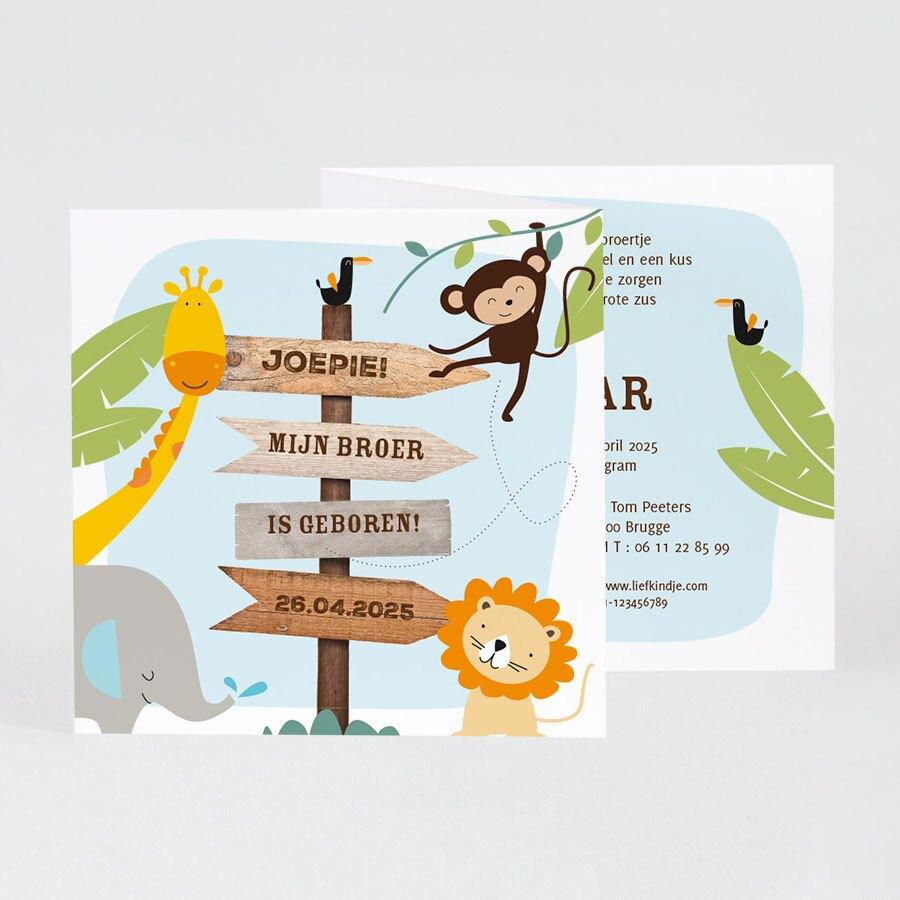 vrolijk-geboortekaartje-met-dierentuindieren-buromac-589020-TA589-020-15-1